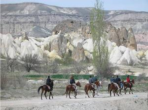 Horse Tour Packages